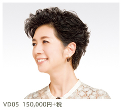 VD09 150,000円+税