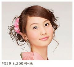 P329 3,200円+税