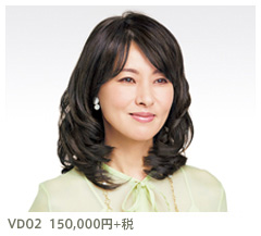 VD01 150,000円+税