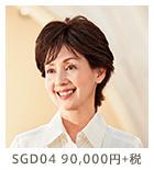 GD04 150,000円+税